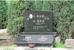 墓园豪华树葬